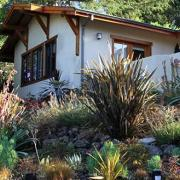 Walnut Creek Mediterranean Front Garden